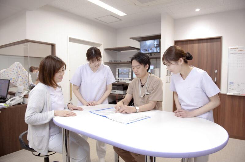 助産師/看護師